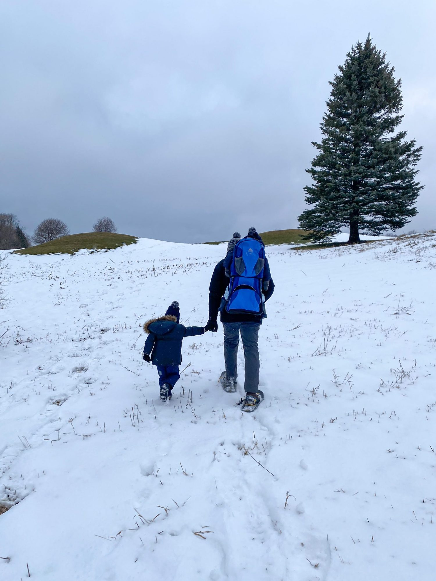 father and son holding hands while snowshoeing |Inn at Bay Harbor by popular Michigan travel blog, The House of Navy: image of a dad and his two sons walking up a snow covered hill while wearing snow shoes.